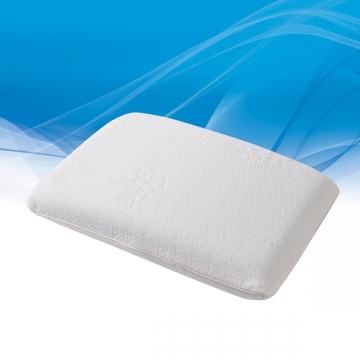 Traditional Mold Pillow