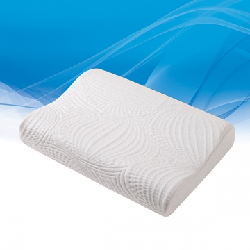 Contour Mold Pillow